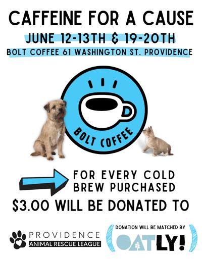 Bolt_Poster-2