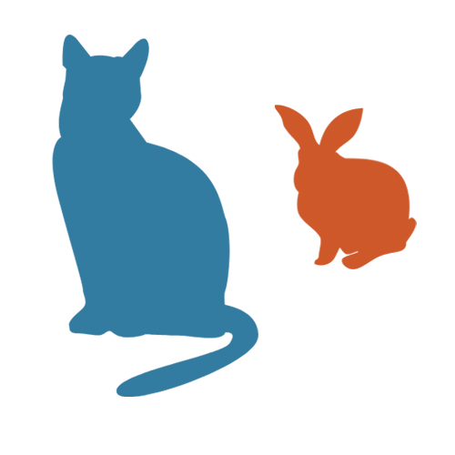 cat_and_bun_transparent