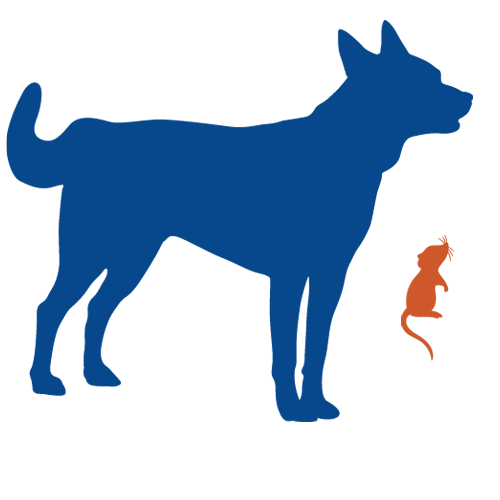 dog_and_mouse_transparent